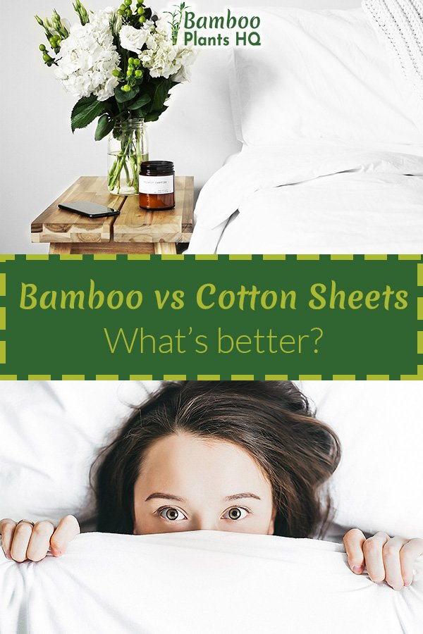Bamboo vs Cotton Sheets - What's better?