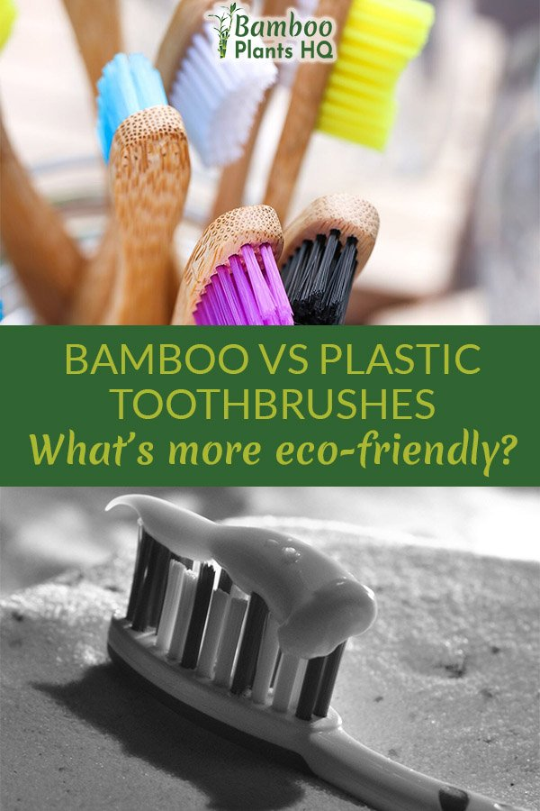 Are bamboo toothbrushes a good alternative to plastic toothbrushes? We take a close look at all the things you should know about and whether or not you should make the switch. #greenlife #toothbrush #bamboo #noplastic #sustainableliving
