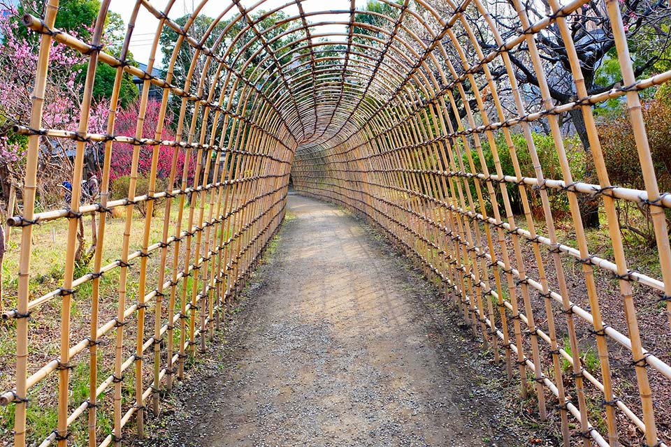 See-through tunnel made with dried bamboo stems