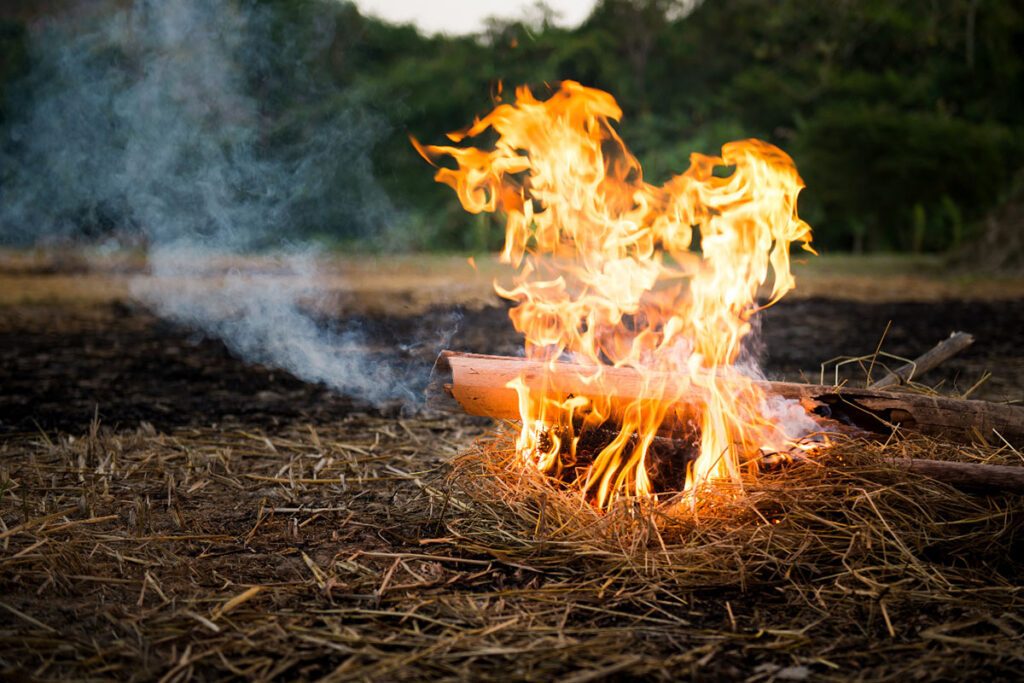 Bamboo culm used as firewood in a fire