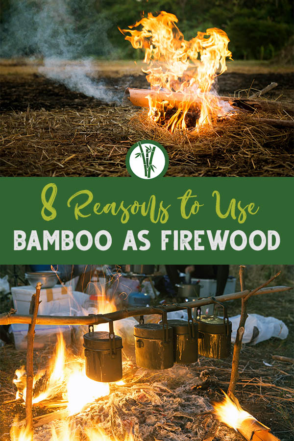 Bamboo culm burning on top and a campfire fueled with bamboo used to heat up some meals on the bottom with the text in the middle: 8 reasons to use bamboo as firewood