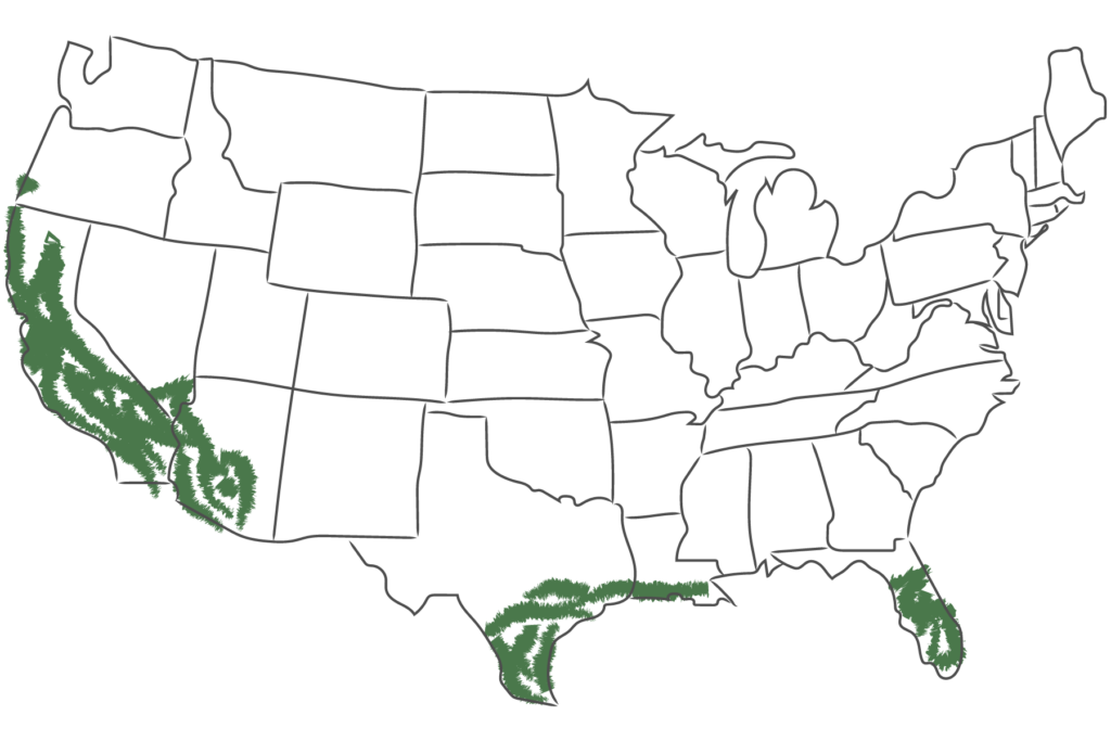 Map of the U.S. with the USDA Zones 9-10 marked in green on it